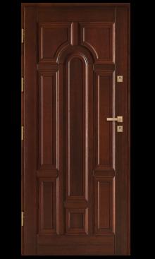 Drzwi wejściowe DZ 1