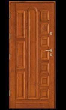 Drzwi wejściowe DZ 10