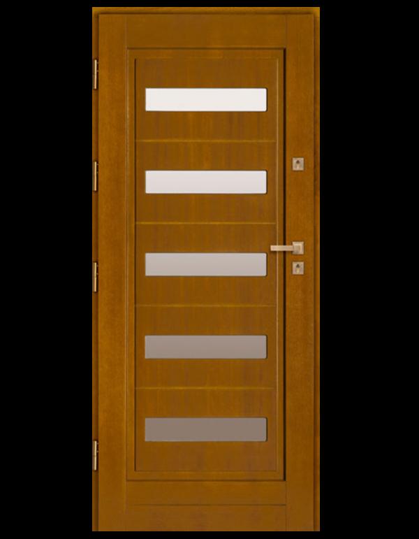 Drzwi wejściowe DZ 16