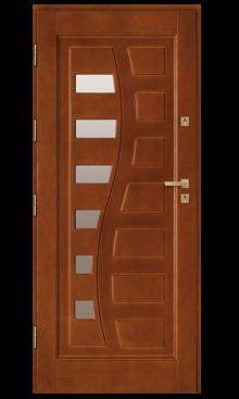 Drzwi wejściowe DZ 9