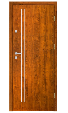Drzwi wejściowe INOX F4