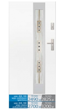 Drzwi wejściowe E12