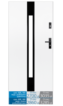 Drzwi wejściowe E19